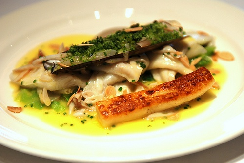 Plaice fillets and herbs photo